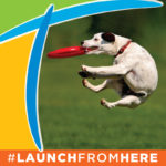 #LaunchFromHere - A dog jumps and catches a frisbee framed by the stylized T of the Titusville logo